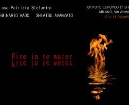 Seminario Hado Shiatsu: Fire in Water